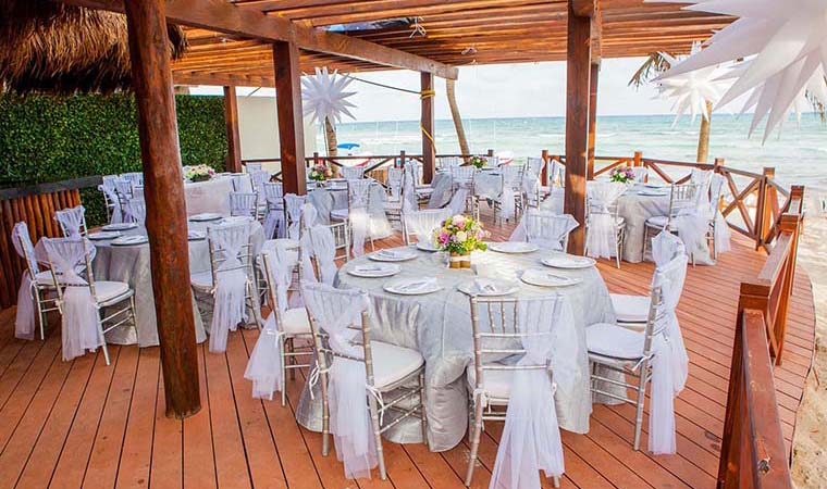 Blue Parrot Weddings